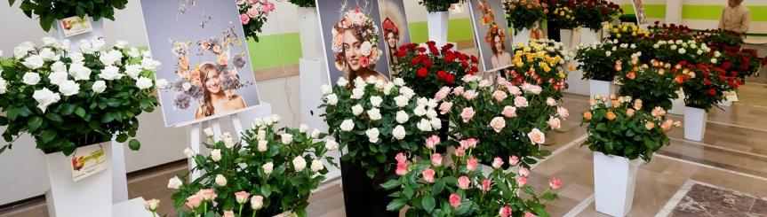 IV Festiwal Róż Kliknięcie w obrazek spowoduje wyświetlenie jego powiększenia