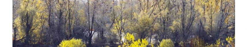 3 Ogólnopolski Festiwal Fotografii Ojczystej Kliknięcie w obrazek spowoduje wyświetlenie jego powiększenia